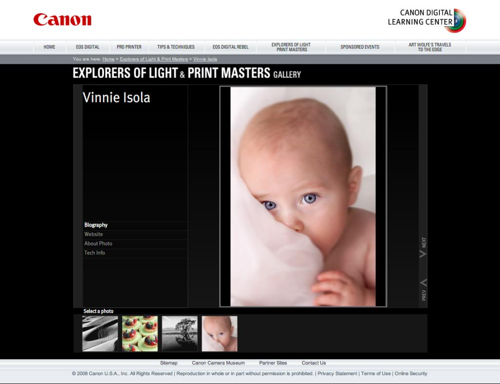 Vin's Page Canon DLC